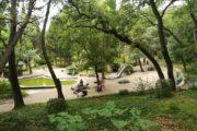 Парк Мисхор