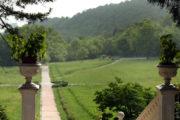 Парк при дворце